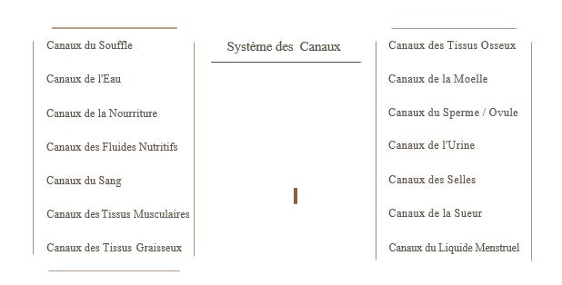 canaux-ayurveda