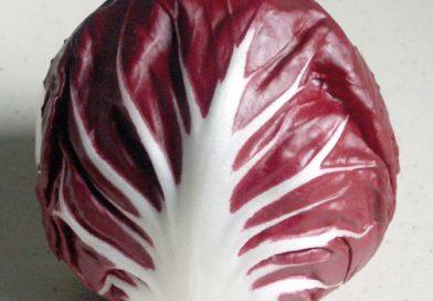 Les nombreux bienfaits du radicchio: un légume qui possède beaucoup d'atouts nutritifs