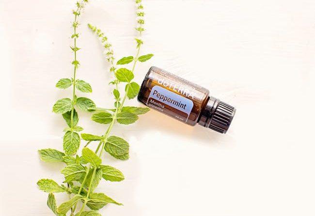 bienfaits huile essentielle menthe poivree