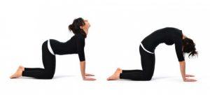 yoga pour le dos 7