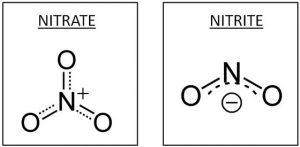 nitrate nitrite