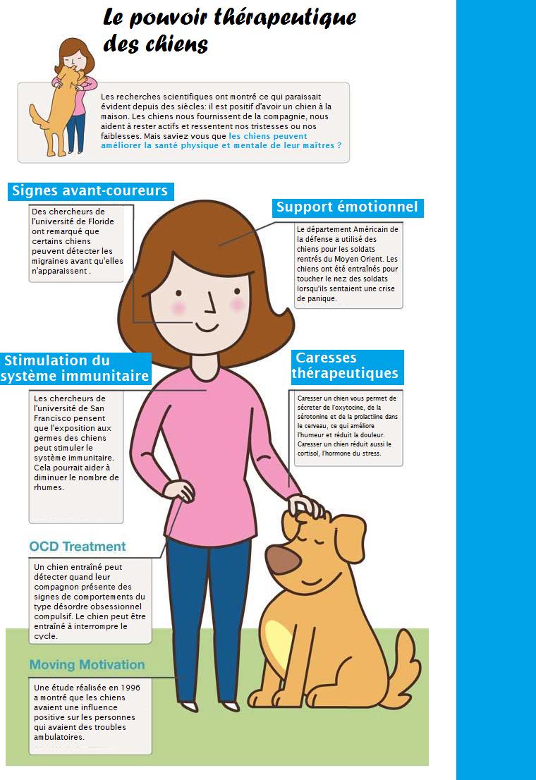 therapie-par-les-animaux