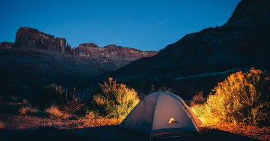 bienfaits du camping