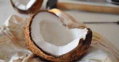 Bienfaits sucre de coco