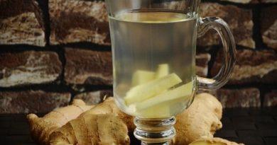 Ayurvéda : Les bienfaits des infusions à base de plantes