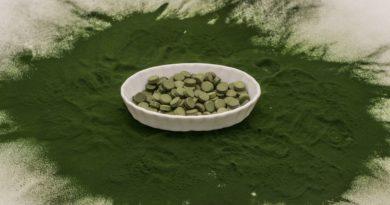 Chlorelle - Bienfaits, propriétés, effets secondaires