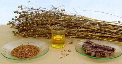 Graines de lin - Bienfaits, valeur nutritionnelle, effets secondaires