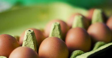 Vitamine B2 : Bienfaits, sources, carence