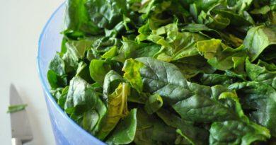 Le guide complet sur la vitamine B9 - Bienfaits, Carence, Sources alimentaires