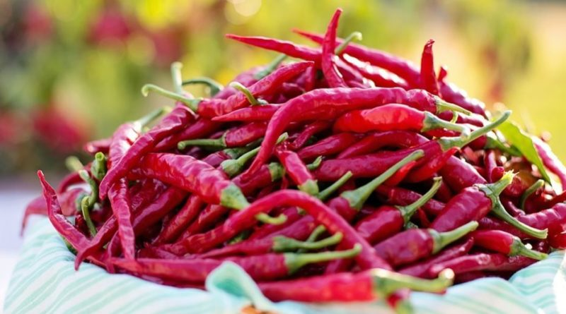 Cayenne pepper is good for your heart, your gut and ...