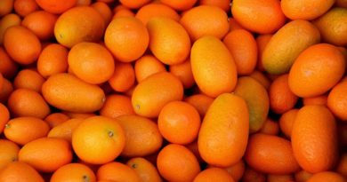 kumquat bienfaits