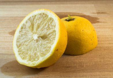 L'acide citrique est-il nocif pour l'organisme ?