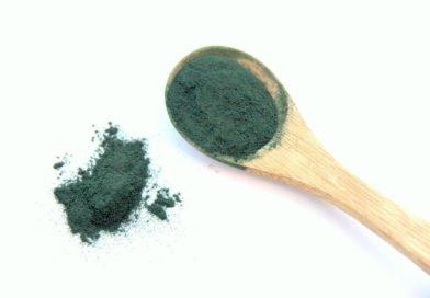 Les bienfaits des algues dans l'alimentation