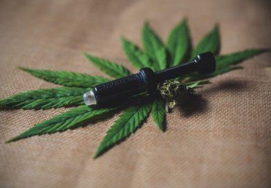 CBD: la part thérapeutique du cannabis