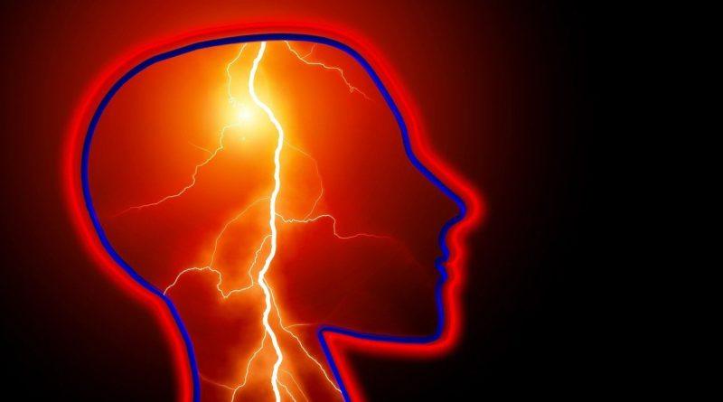 epilepsie spamophilie