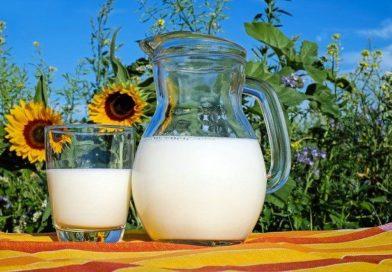 Pourquoi limiter ou éviter les produits laitiers