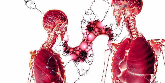 Quels sont les médicaments toxiques pour le foie ?