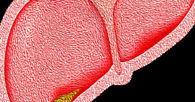 lipides foie